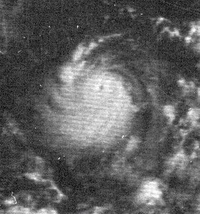 Satellite photo of Hurricane Edith near peak strength, Sept. 9, 1971 (NOAA)