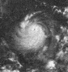 Satellite photo of Hurricane Edith near peak strength, Sept. 9, 1971 (NOAA)